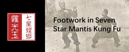 Footwork in Seven Star Mantis Kung Fu