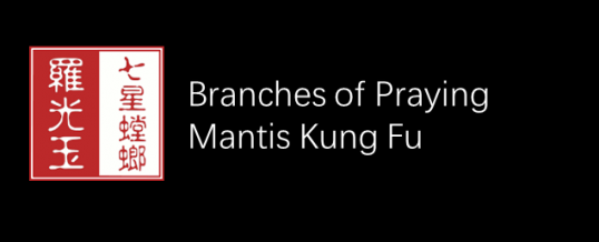 Branches of Mantis Kung Fu