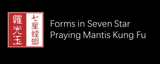 Forms Training in Seven Star Praying Mantis Kung Fu