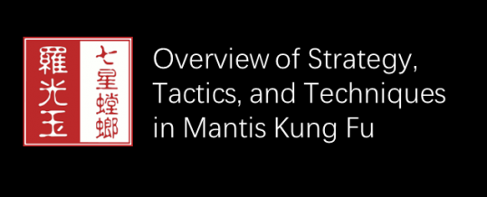 Strategy, Tactics, and Techniques in Seven Star Mantis